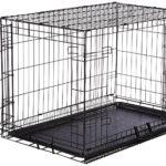 AmazonBasics Double-Door Folding Metal Dog Crate