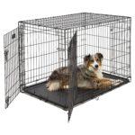 "MidWest iCrate 42"" Double Door Folding Metal Dog Crate"