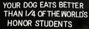 dog slogan