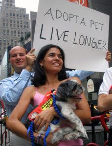 adopt a pet protest