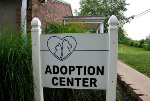 adoption centre