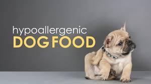hypo dog food