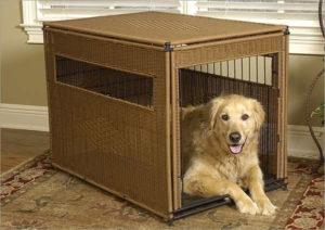 lab dog crate