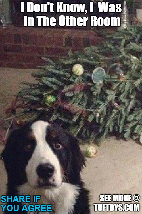 hilarious picture of a dog trying to look as innocent as possible after getting into a pickle with a Christmas tree