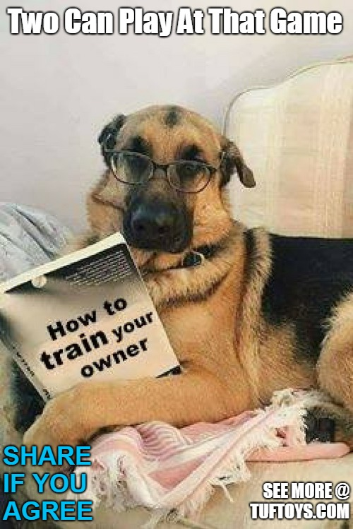 funny picture of a german shepherd proving dogs are just as capable of teaching their owners given the necessary tools