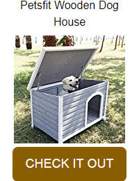 Dog House / Kennel