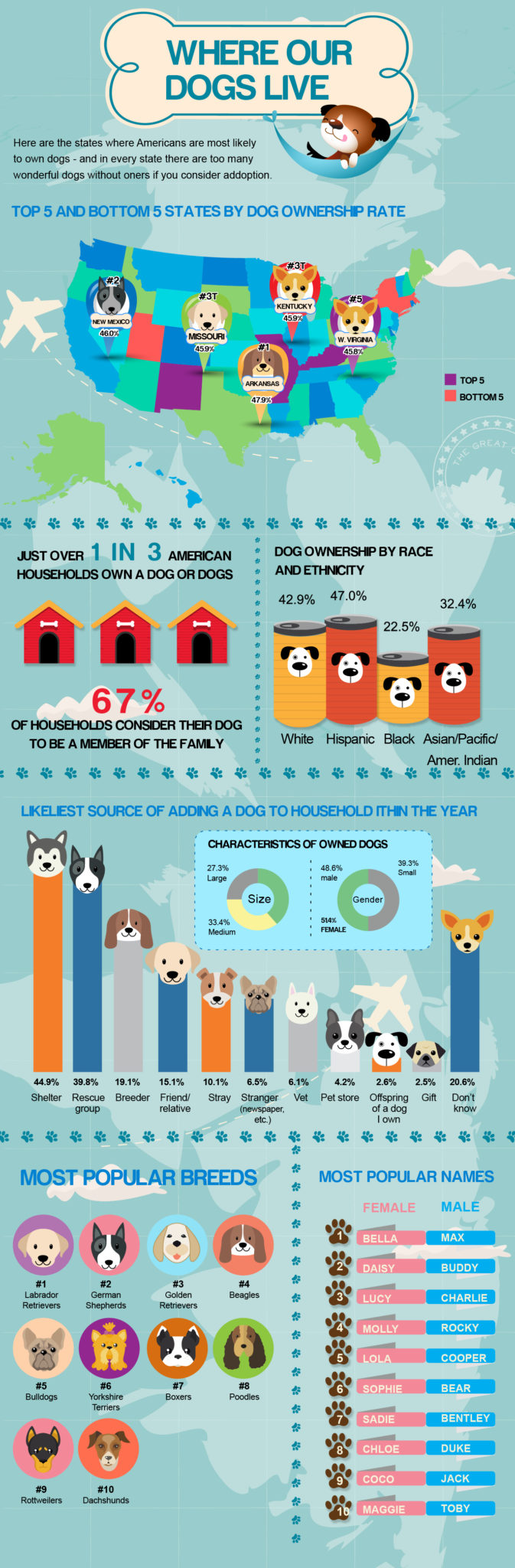where do all our dogs live?