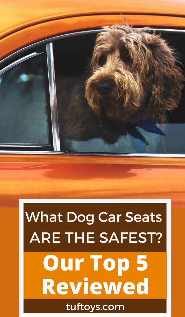 What dog car seats are the safest. Our top 5 reviewed