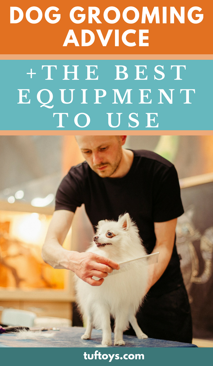 Advice on the best dog grooming equipment to use