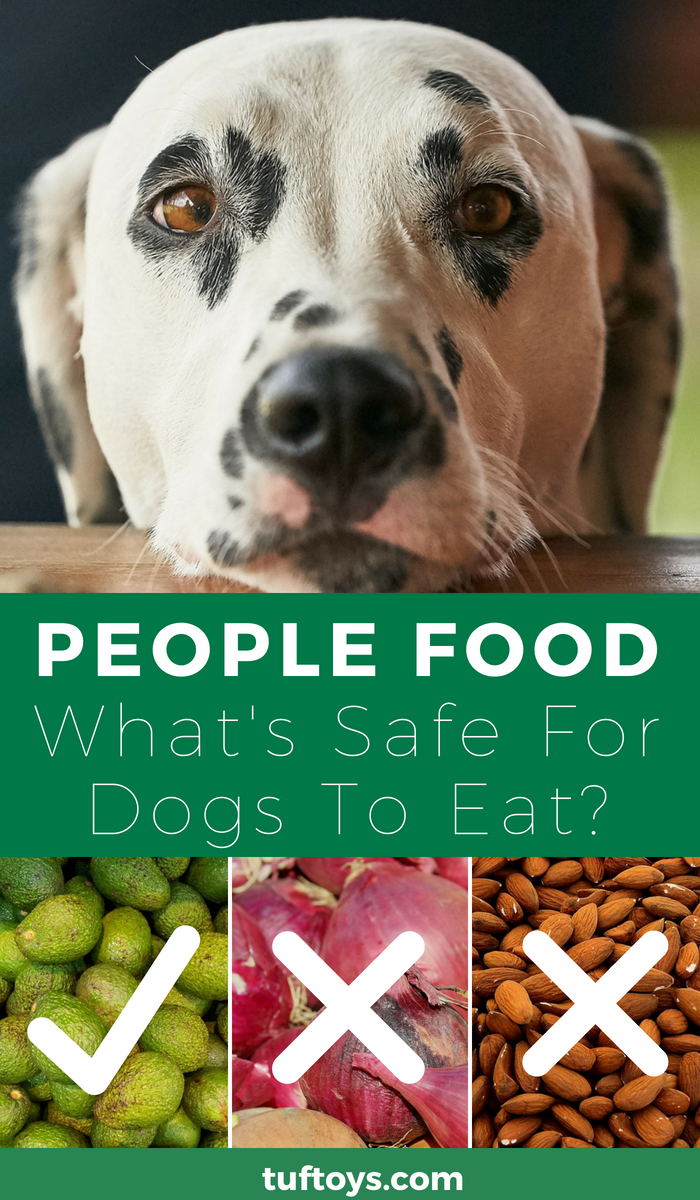 What people food is safe for your dog to eat
