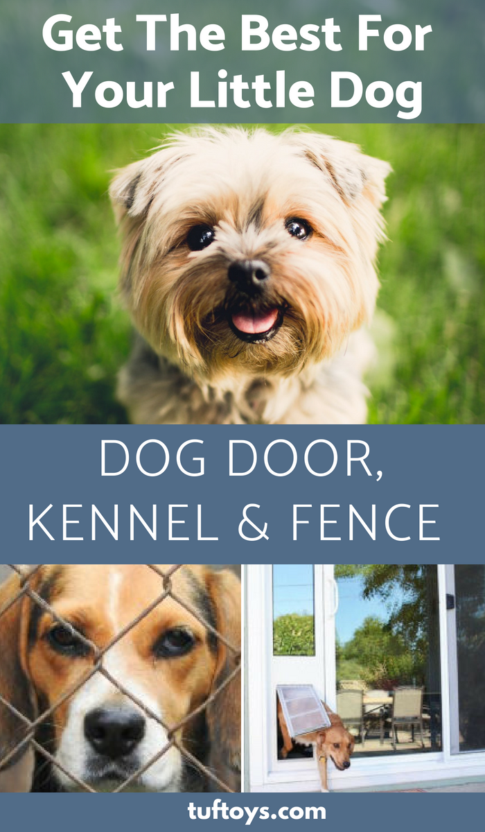 Get the best for your little dog in terms of dog doors, kennels and fences