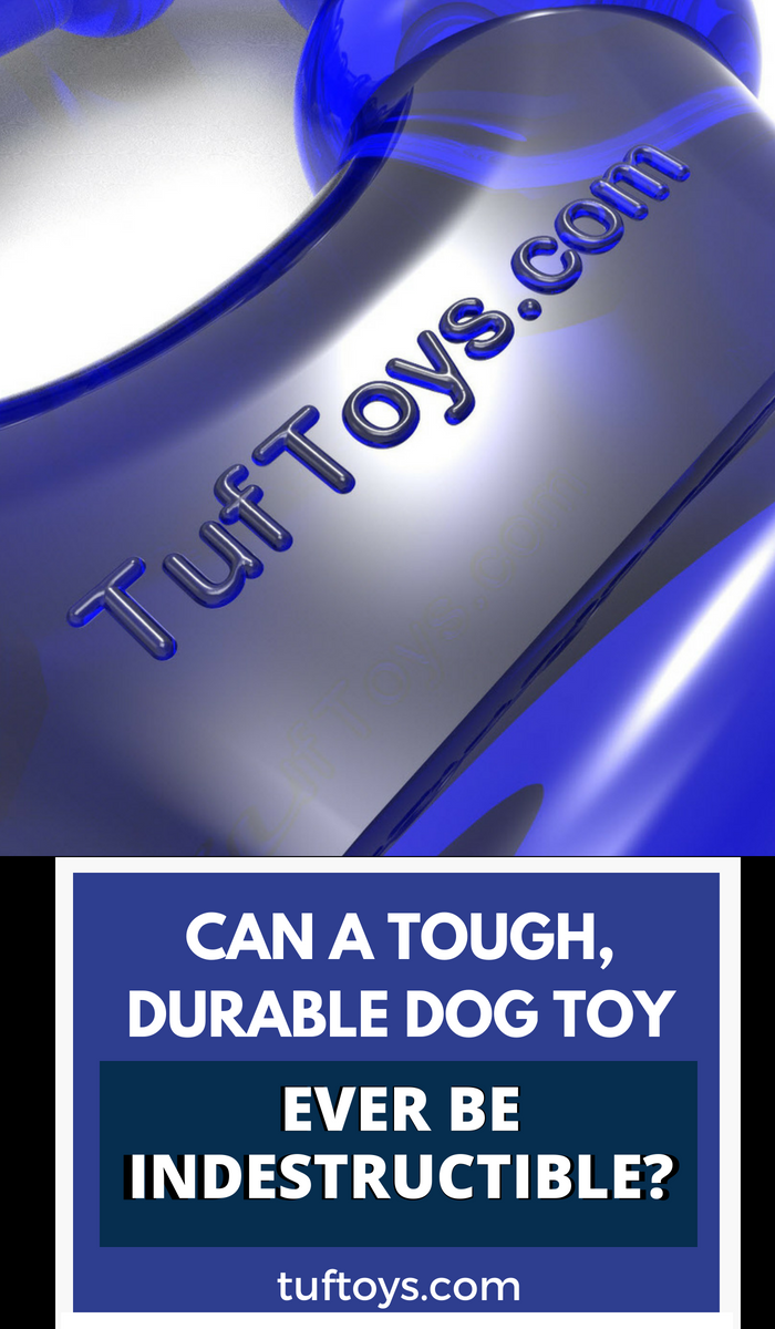Can a dog toy ever be truly indestructible?