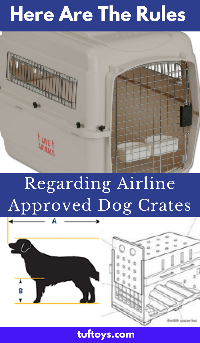 What are the rules regarding airline approved crates?