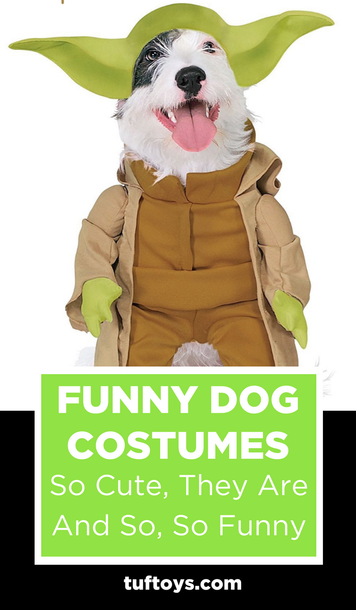 Funny dog costumes