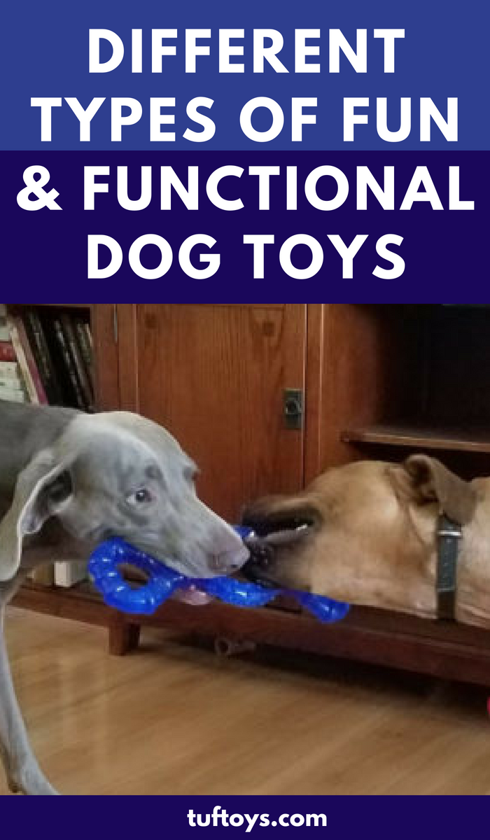 Different types of fun and functional dog toys