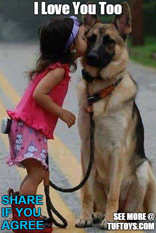 cute picture of a girl kissing her dog at head height, the GSD looks touched