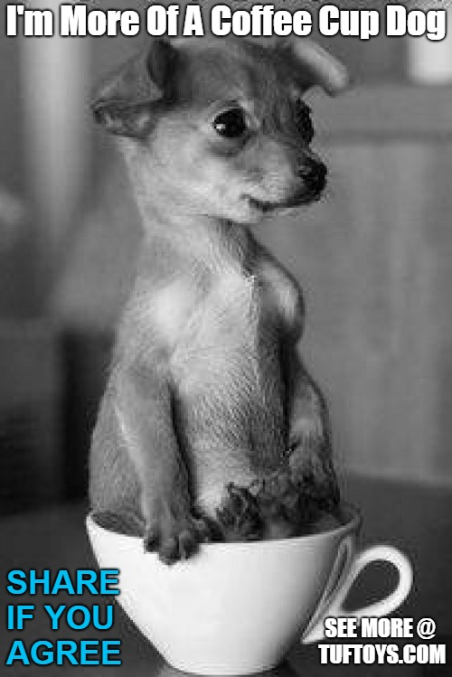 cute puppy sitting in a coffee cup instead of a tea cup, proclaiming to be a coffee fan