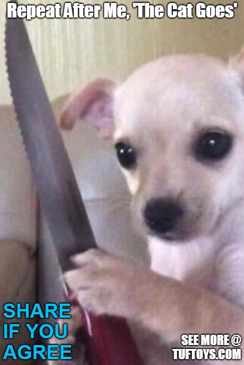 cute puppy threatening with knife
