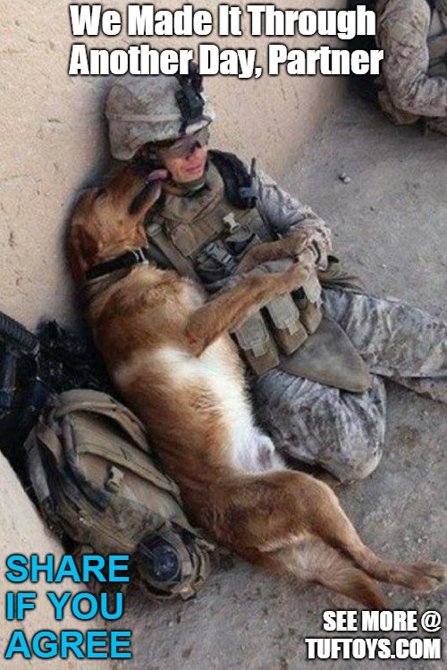 moving picture of a soldier and his dog getting through another day of battle
