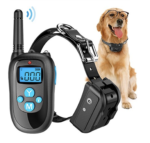 Electronic Dog Collars