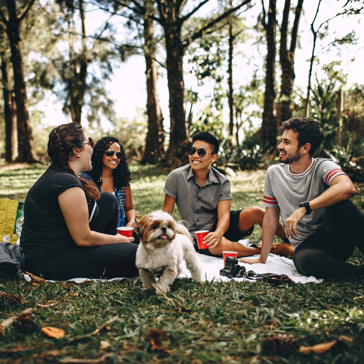 humans-out-for-picnic-with-dog